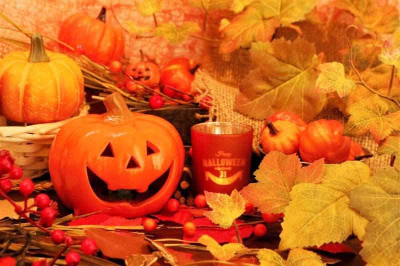 10/29~10/31 ハロウィン限定企画!魔女の手紙 開催!